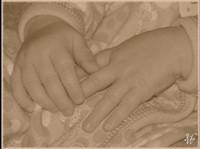 Photo: 13-Baby Hands