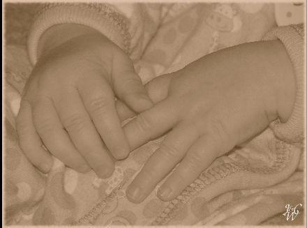 13-Baby Hands
