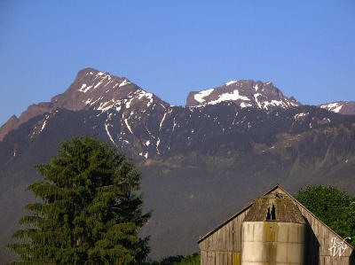 53- Farm view of Mount Cheam