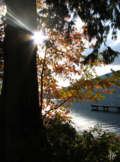 Fall Time at Cultus