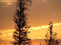 Photo: Golden Sky