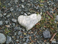 Photo: Heart  amongst the gravel