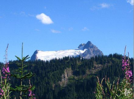 36- Mountain Glacier