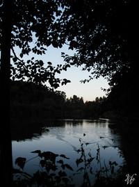 Photo: 43- Fish Trap Creek at dusk